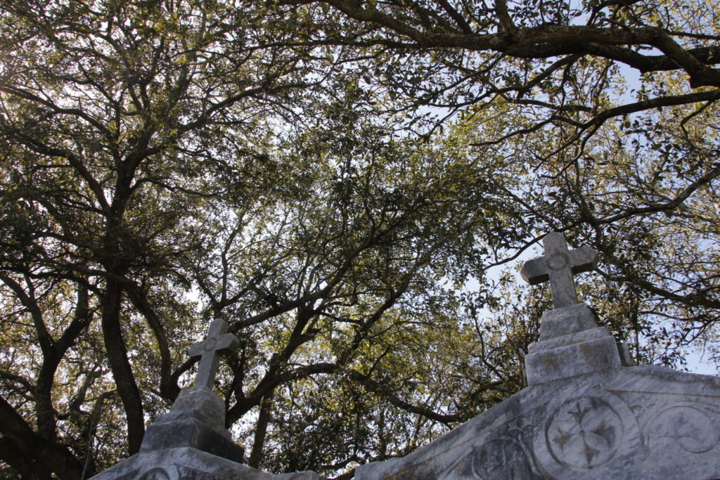 New Orleans, USA, Saint Lewis Cemetery, Friedhof