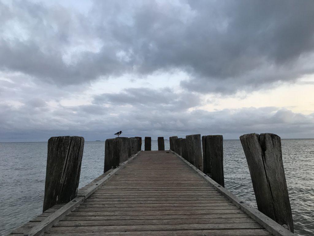 Foehr, Wasser, Nordsee, Meer, Steg