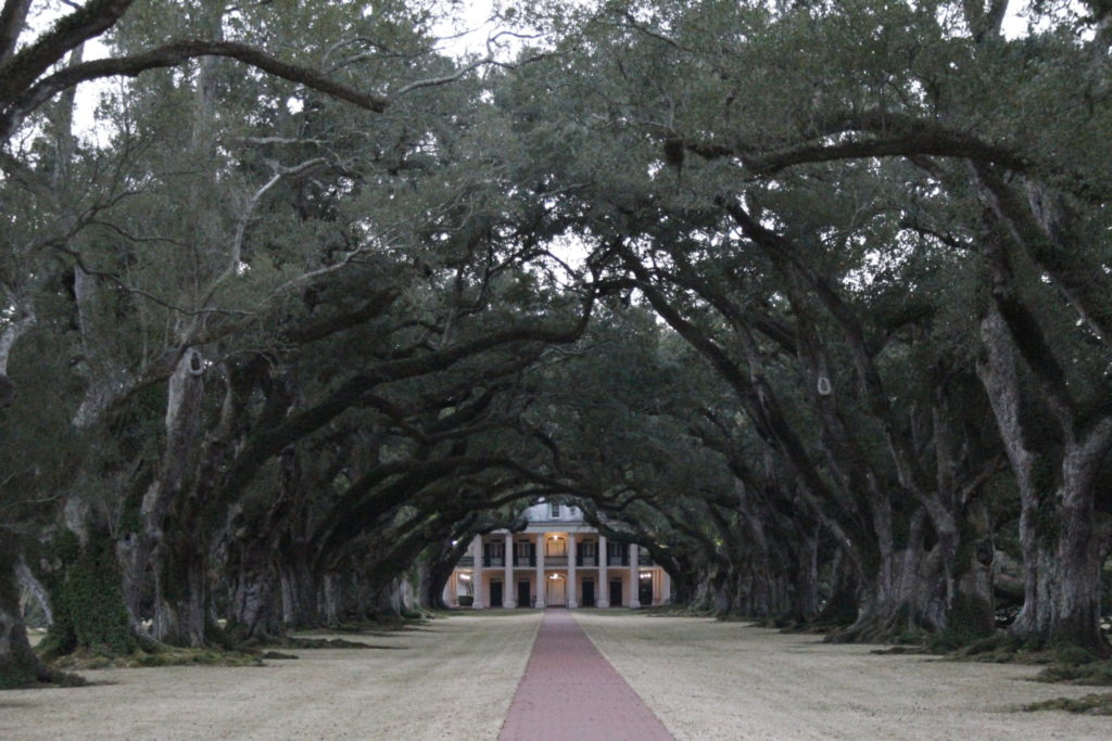 Oak Alley Plantage, Louisiana, USA, New Orleans
