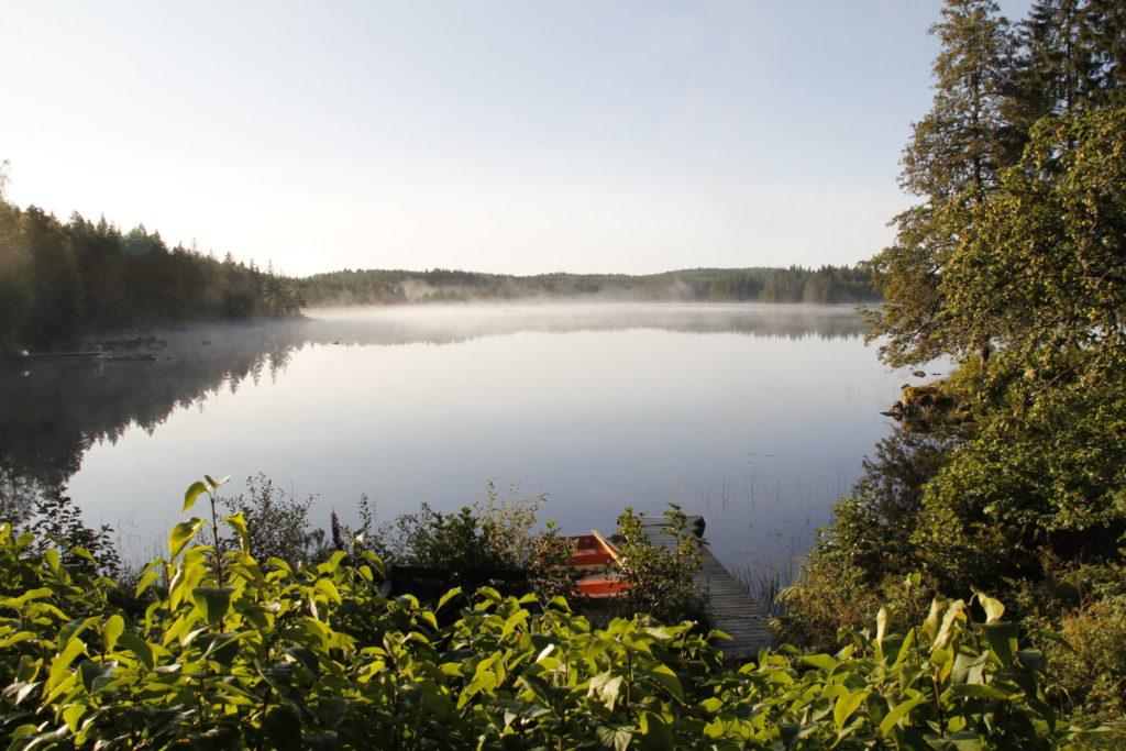 Schweden, See, morgens, Wald, See