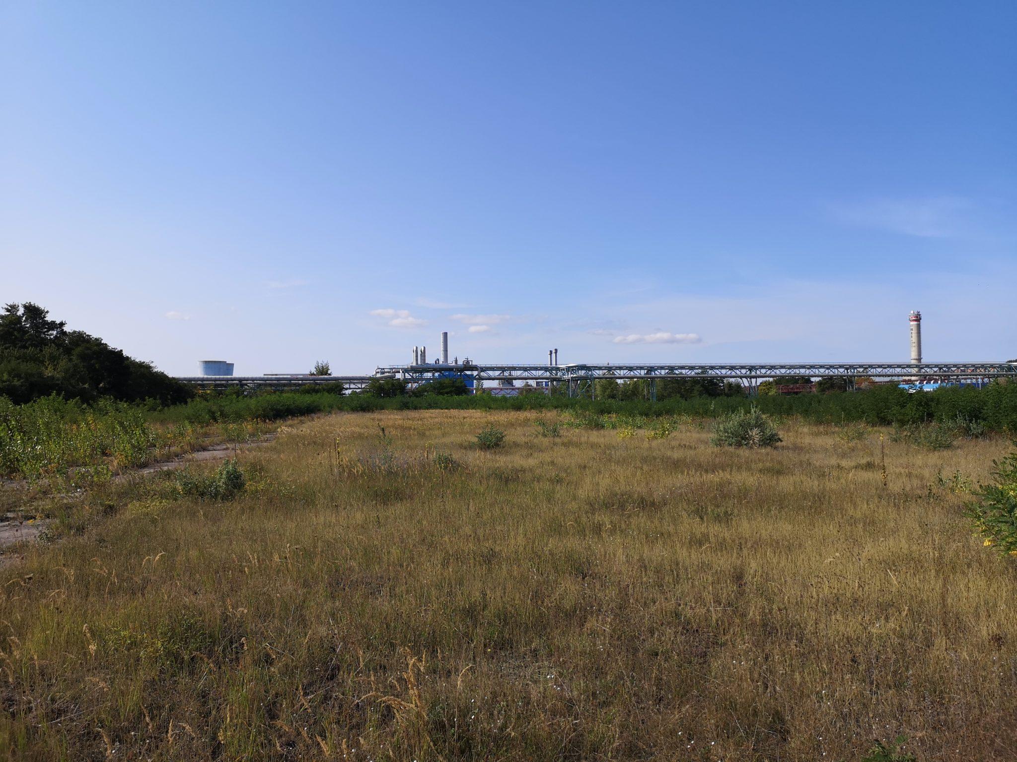 Industrie und Brachfläche in Bitterfeld